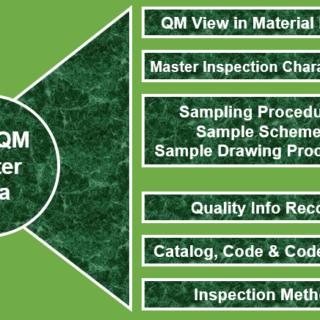 SAP QM Master Data
